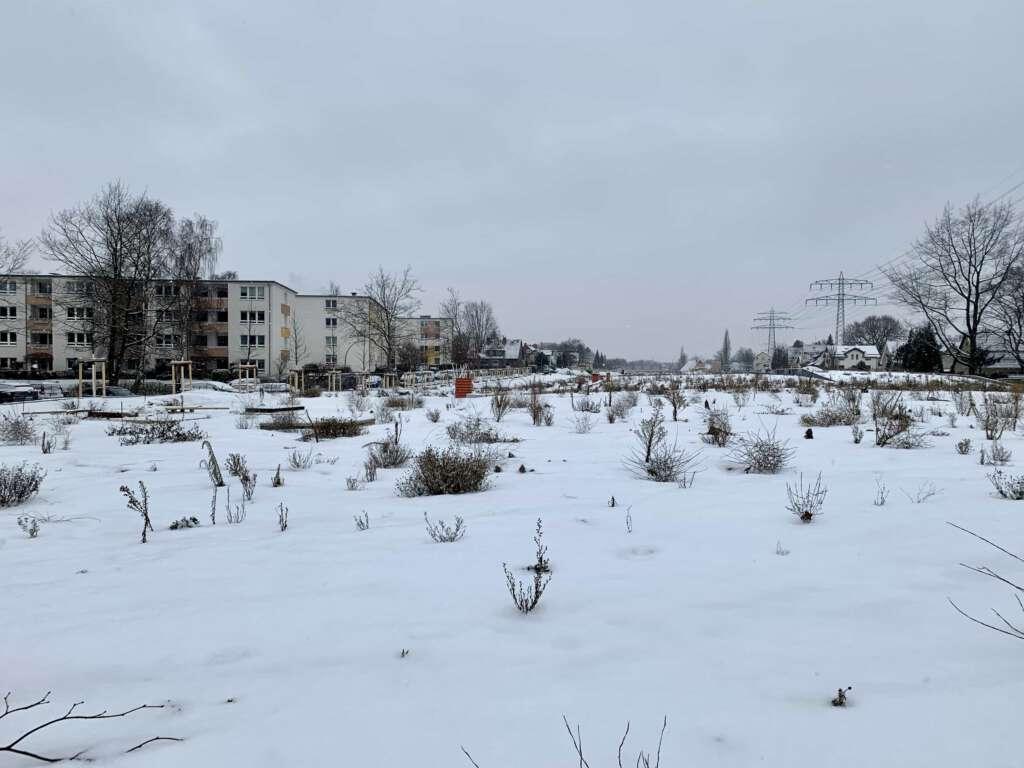 Künftige Park- und Kleingartenanlage auf dem Schnelsen-Deckel